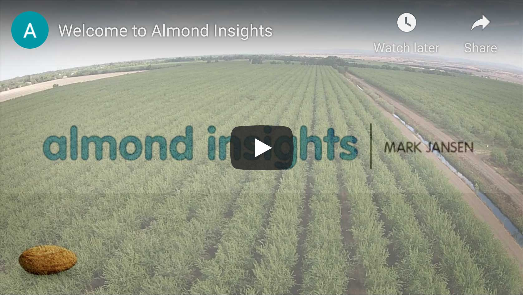 Mark Jansen Welcomes You To Almond Insights